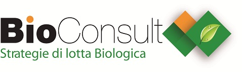 Impollinazione naturale con Bombus terrestris. Natural pollination